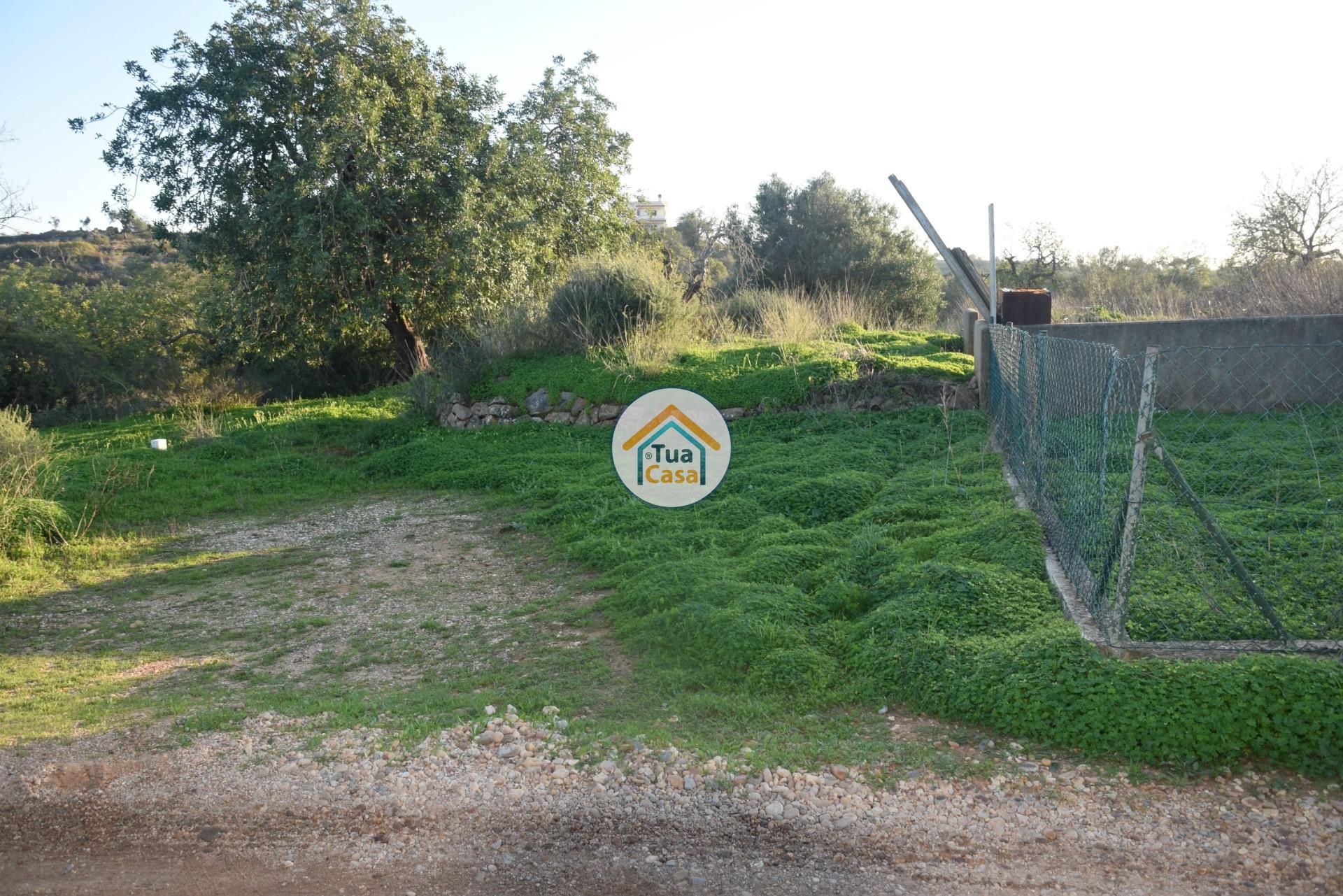 Moradia T2 Ruina Estoi Faro Algarve (6)