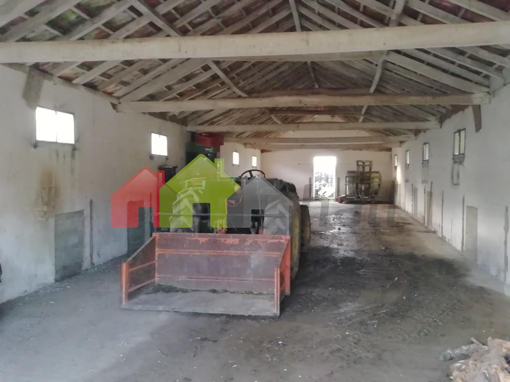 interior 1º armazém
