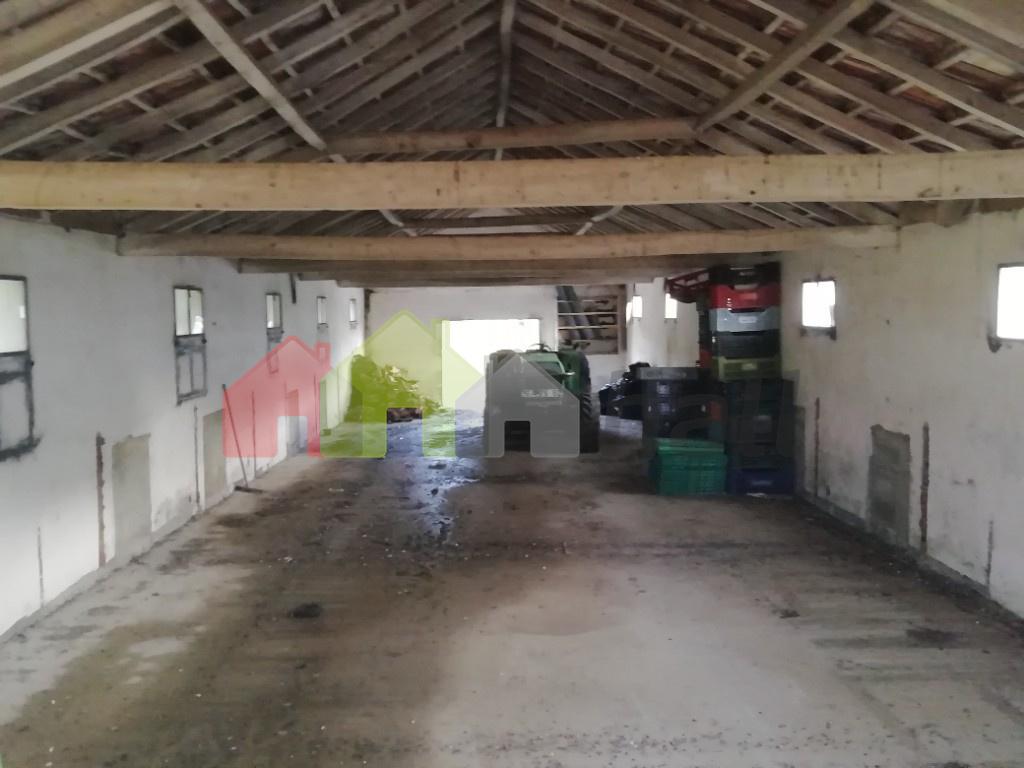 interior 1º armazem.