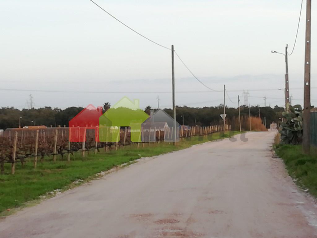 estrada para Lagameças