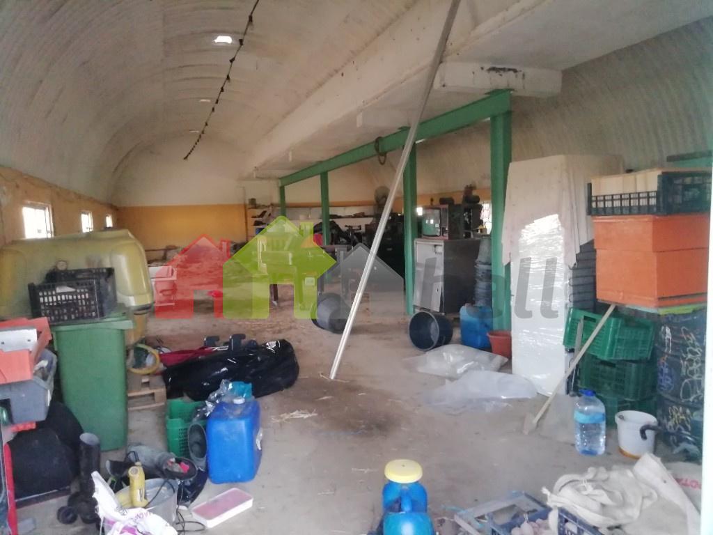 interior 2º armazém