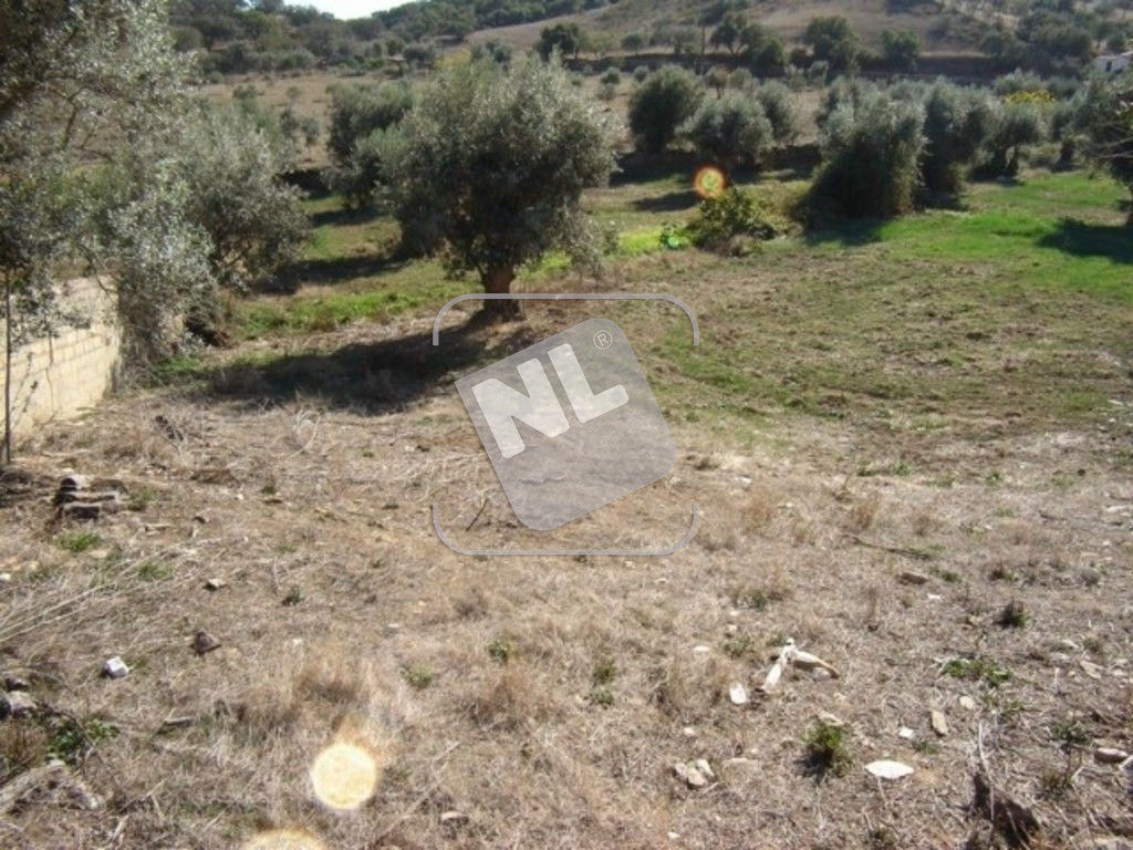 Terreno (2)