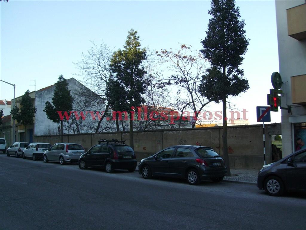 Frente Avenida